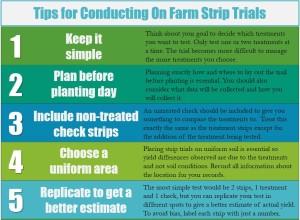 On Farm Strip Trials