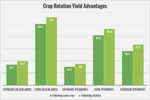 yield-advantage