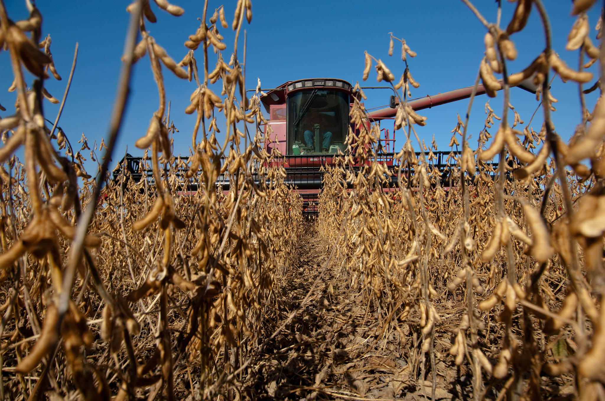 Keeping Safety Top of Mind During Harvest