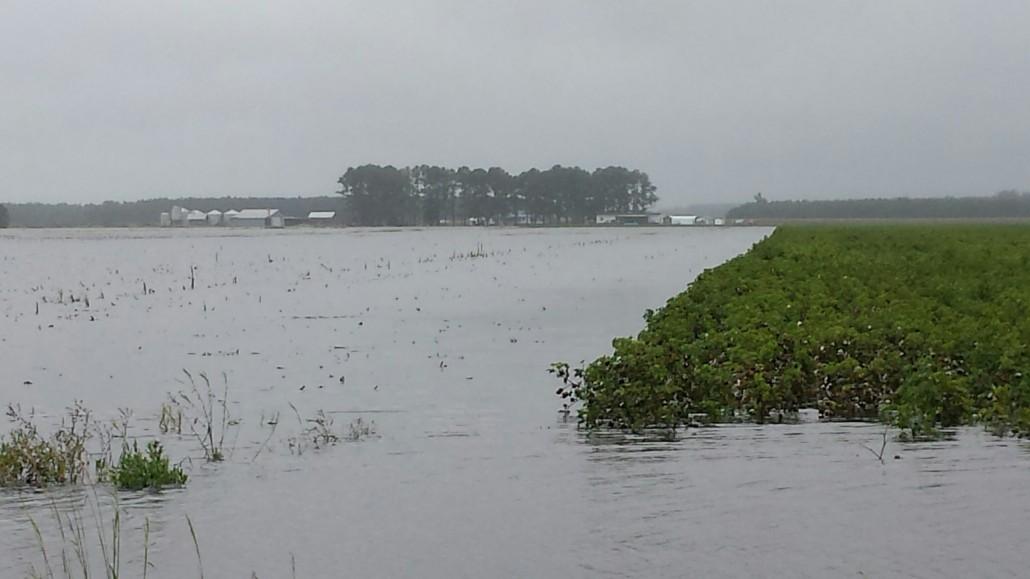 2015 flooding