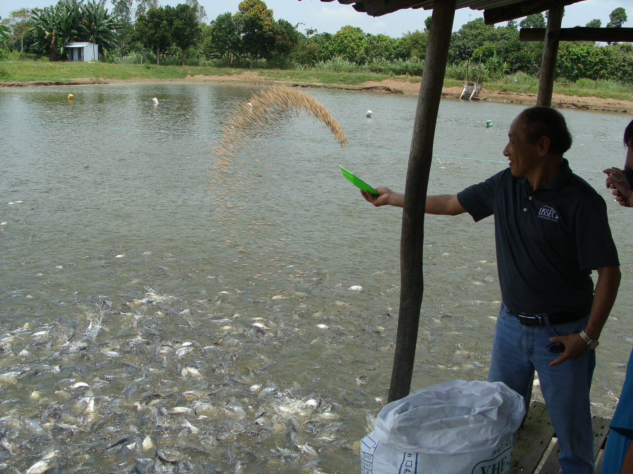 Vietnam Feeds Fish U.S. Soy