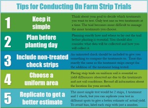 On Farm Strip Trials