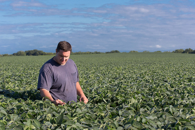 Want to Know More About Your Soy Checkoff? See For Yourself!