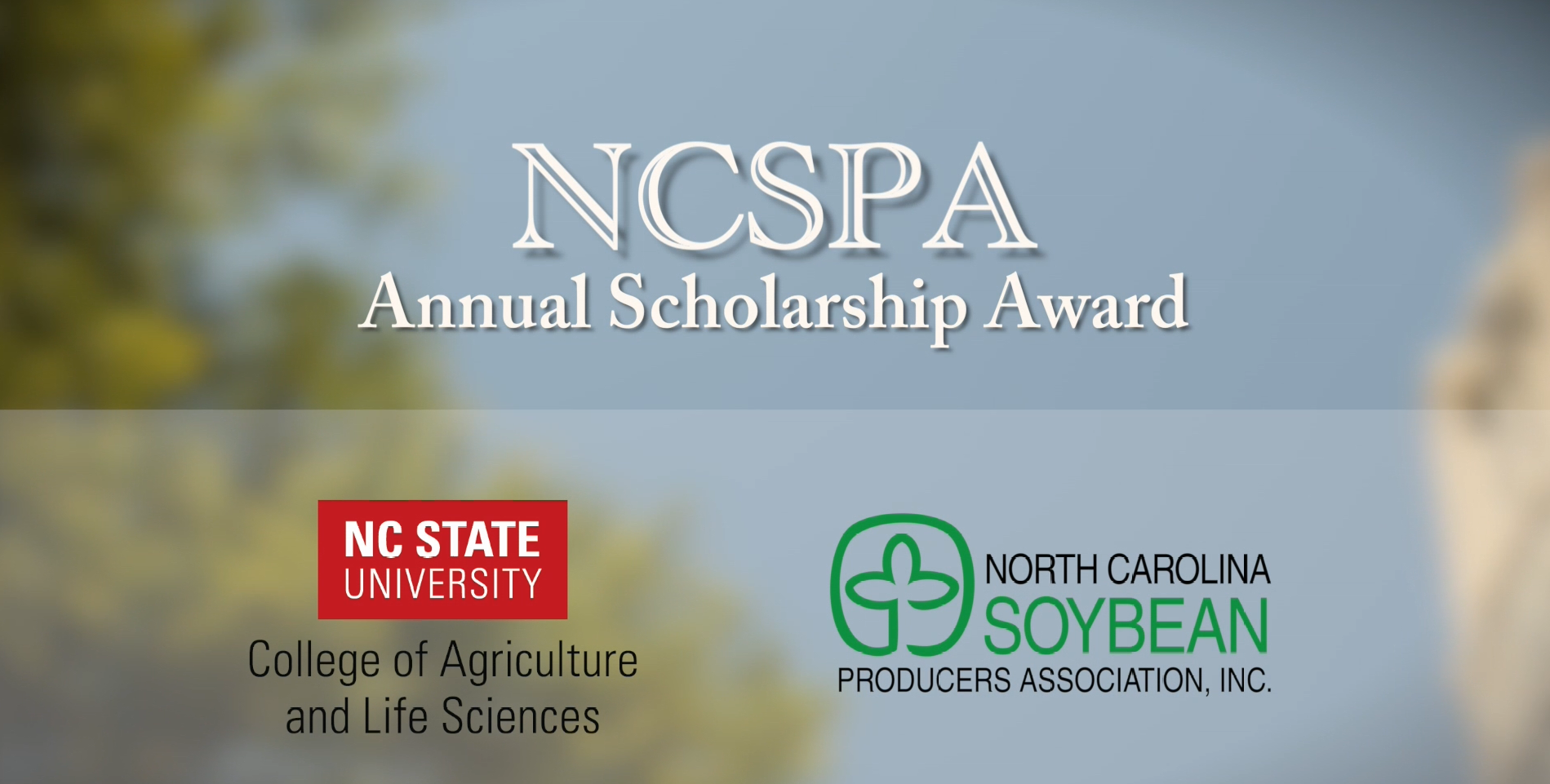 Congratulations Soy Scholarship Winners!