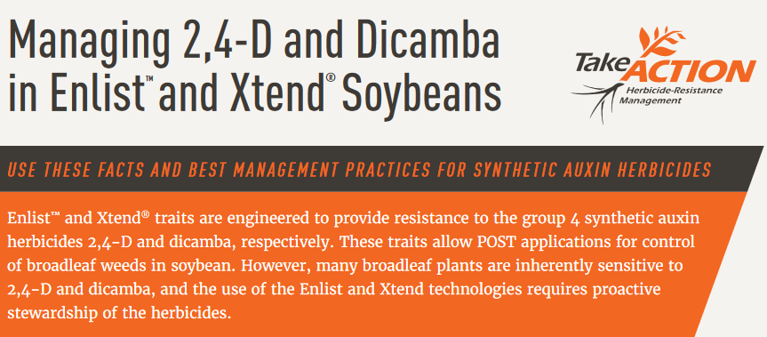 Synthetic Auxin Herbicide Fact Sheet 6-19