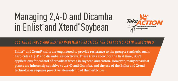 Synthetic Auxin Herbicide Fact Sheet2