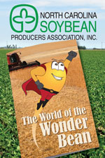 Wonder Bean Cover Graphic
