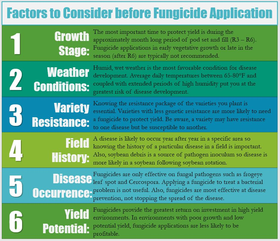 factors to consider before releasing a story Selecting an enzyme feed additive 7 critical factors to consider 7 factors to consider when choosing if you plan to mix the enzyme in your feed before.