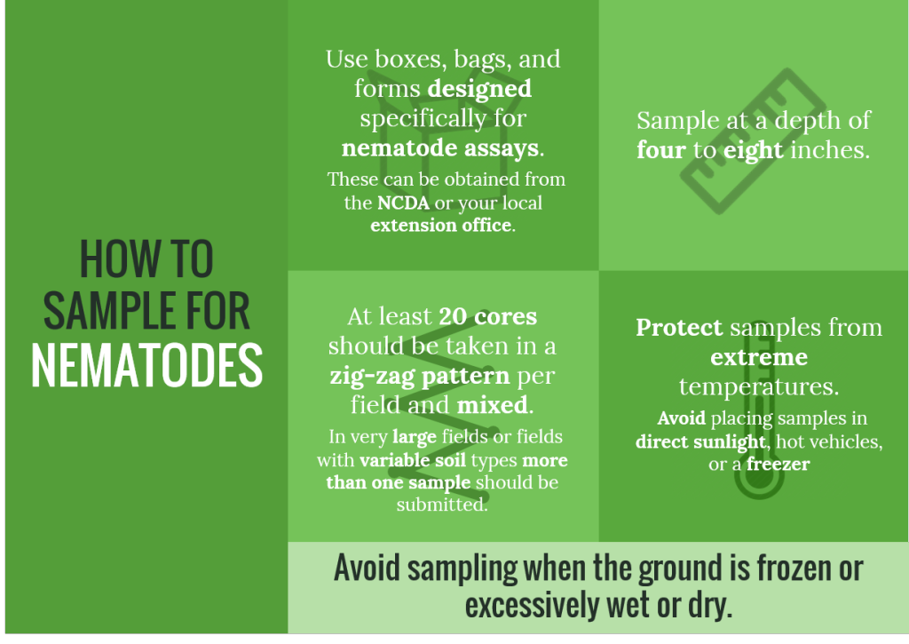 how-to-sample