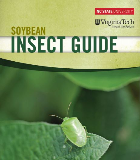 insect-guide