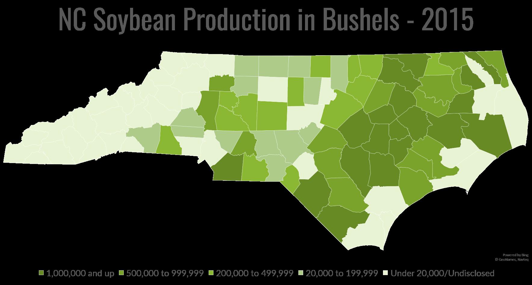 North Carolina Soybeans - North Carolina Soybeans