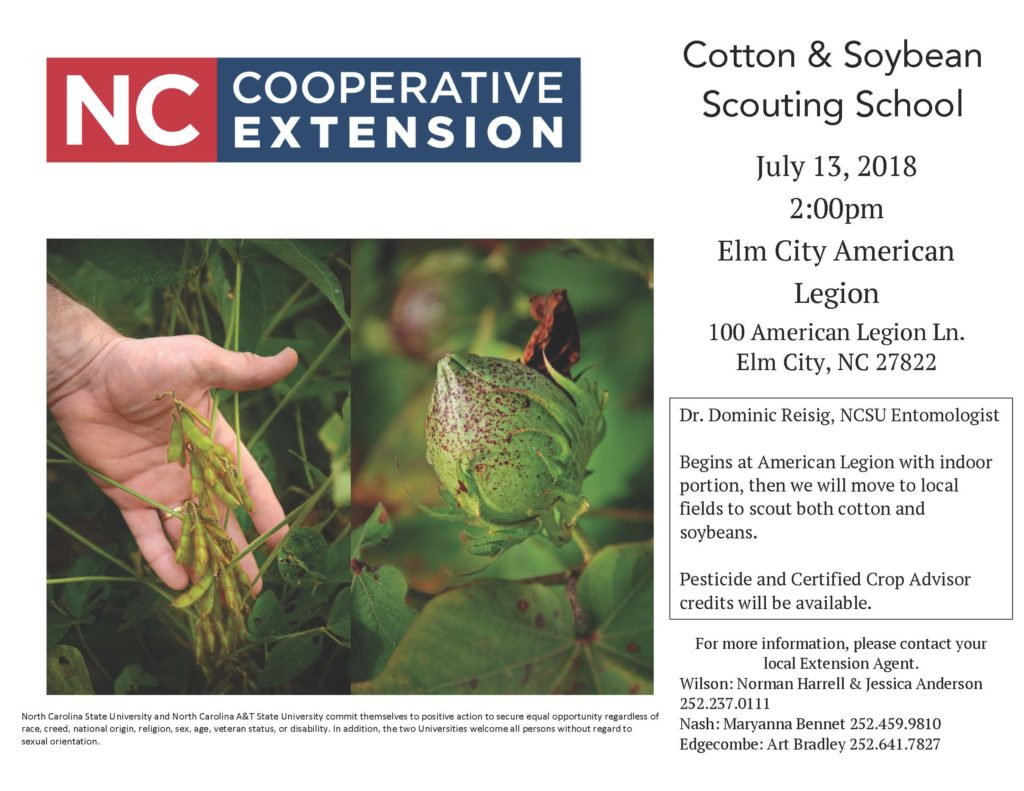 Cotton and Soybean Scouting School