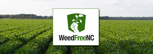 weed-free-banner-620